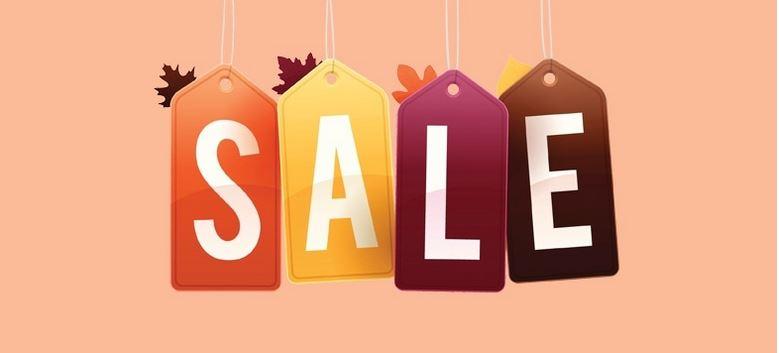 witt weiden sale