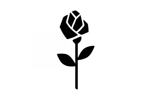 schwarze Rose Seidensticker Brand