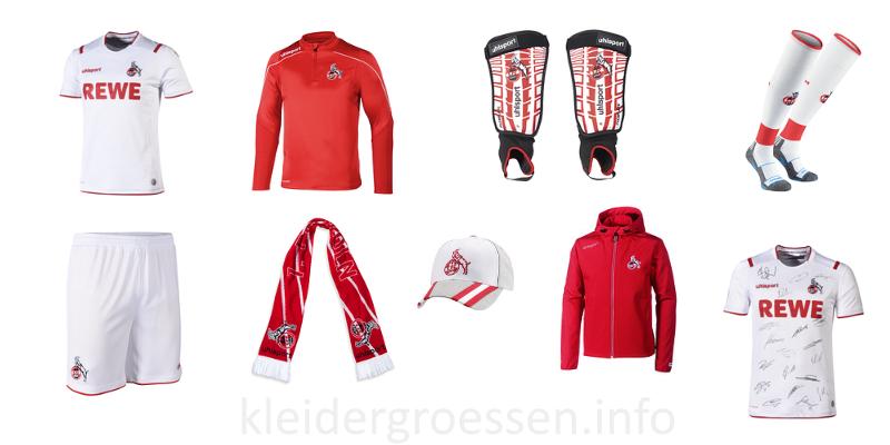 1. FC Köln Männer